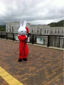 徳山ダムにウサギ!?