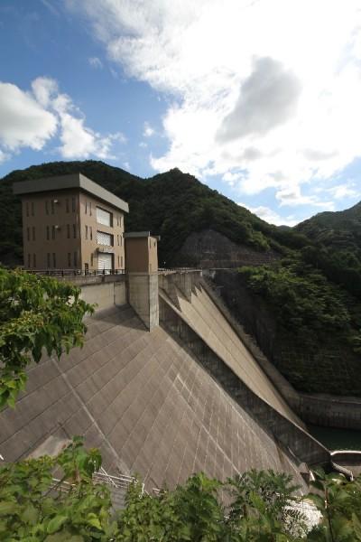 大島ダム(右岸より下流側の堤体を望む)