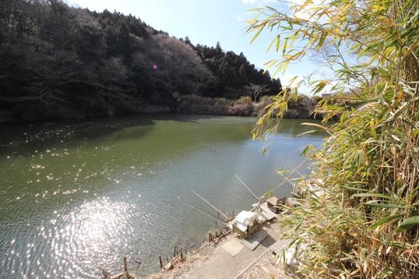 豊浦山池その6